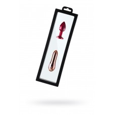 Рамка для выкладки прозрачная с черным кантом с еврослотом 30*9